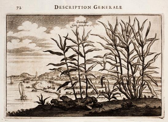 Nieuhof-Description-générale-de-la-Chine-1665_0858.tif (1)